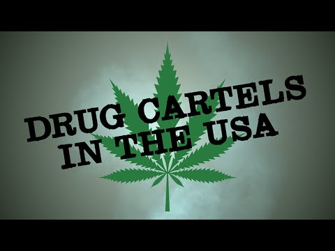 Drug Cartels In America