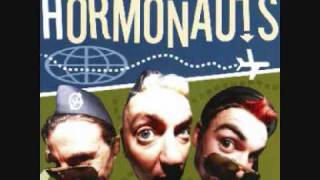 Watch Hormonauts This Cats Too Fat video