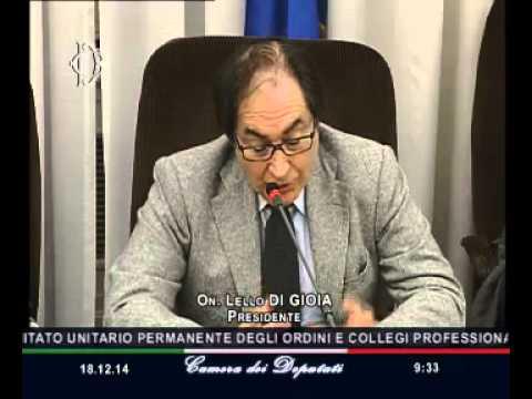 Roma - Previdenza pubblica e privata, audizione Ordini e Collegi professionali (18.12.14)