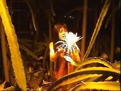 新月の夜 奥飛騨ドラゴンの花と鮎罹