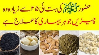 Tib E Nabvi SAWW || 25 Thing's Are Treatment Of Every Disease || Urdu Lab