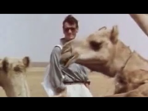 Crossing the Sahara desert by camel - Michael Palin - BBC Video