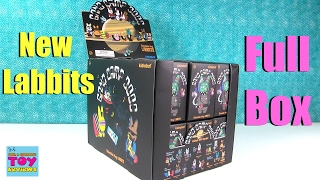 Band Camp 3000 Collectible Vinyl Labbits Blind Box Opening | PSToyReviews