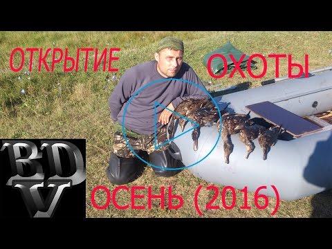 Когда открытие осенней охоты на утку 2018 в кемеровской области