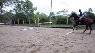 Boss Grid Jumping