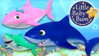 Baby Shark Song   Nursery Rhymes   By LittleBabyBum!
