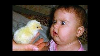 Cute Babies Doing Funny Things | Best funny babies videos