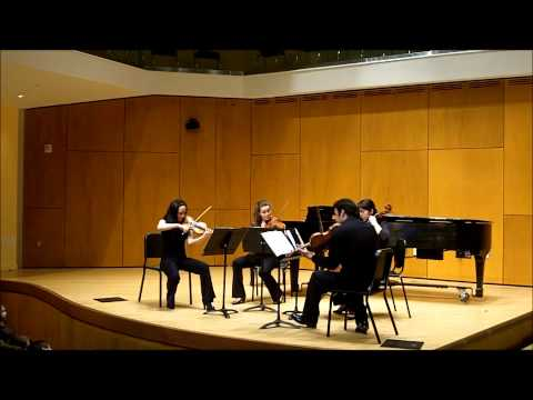 Cory J Flynn - String Solo No1 Movement No2
