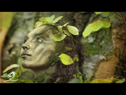 30 Minutes of Relaxing Celtic Music: Beautiful Music, Flute Music, Instrumental Music ★91