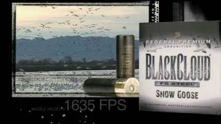 Black Cloud Snow Goose - CheaperThanDirt