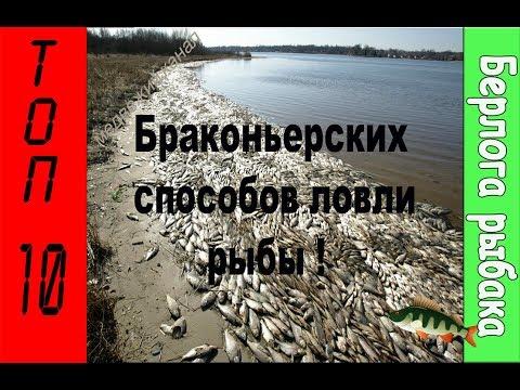 Рыбалка,Браконьеры,ТОП-10 Браконьерских способов рыбалки.