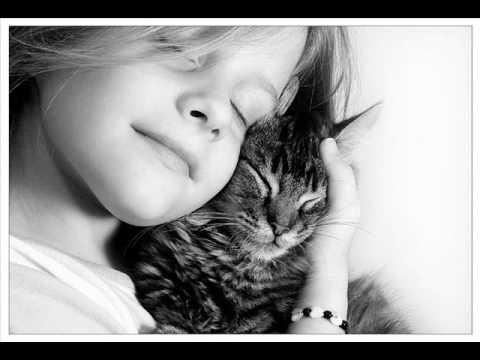 ο Γάτος - Ελένη Πέτα