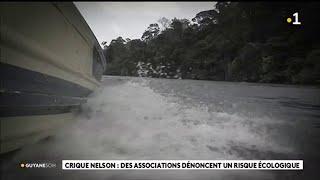 Crique Nelson : des associations dénoncent un risque écologique