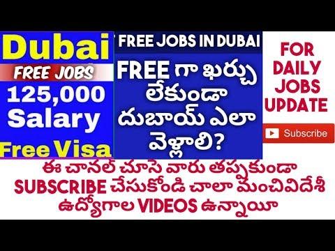 Dubai jobs 2019 || free jobs recruitments || fresher jobs || munna TIMES telugu