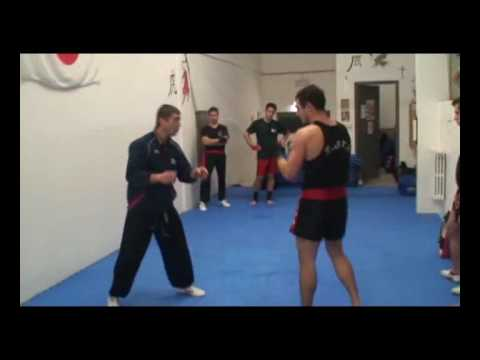 Chinese sanshou techniques-complete fighting method (part two) Image 1
