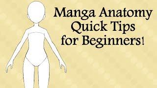 Manga Anatomy Quick Tips for Beginners!