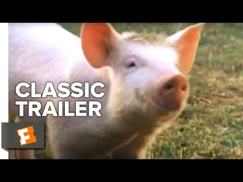 Babe Official Trailer #1 - Miriam Margolyes Movie (1995) Hd video