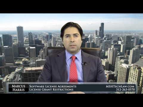 Software Litigation License Grant Restrictions