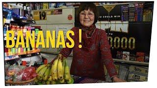 Convenience Store Owner Throws Bananas at Burglar (ft. Motoki Maxted)