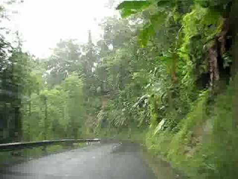 Driving through Route de la Trace, Martinique