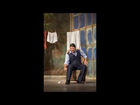 David Bizic - Le Nozze di Figaro - Se vuol ballare