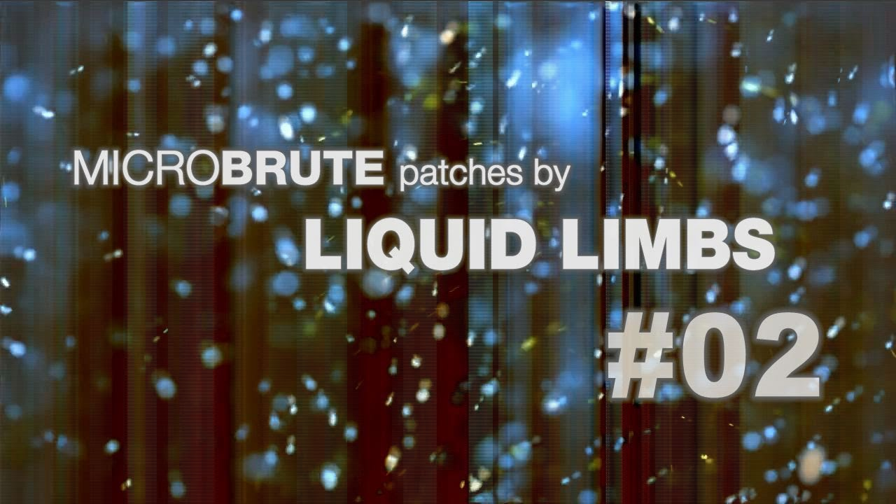 Liquid Limbs - Hydro-Gixer