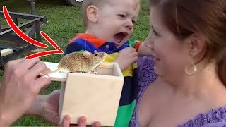 Best Kids PRANKS and KARMA COMPILATION! 99 % CAN'T STOP LAUGHING While watching this
