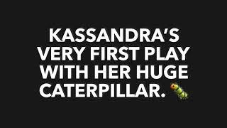 Kassie's caterpillar. 🐛