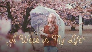 A Week in My Life in Tokyo ?