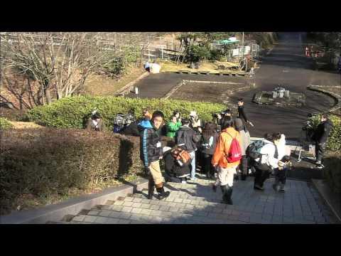 関市 岐阜県博物館「春の七草ウォッチング」