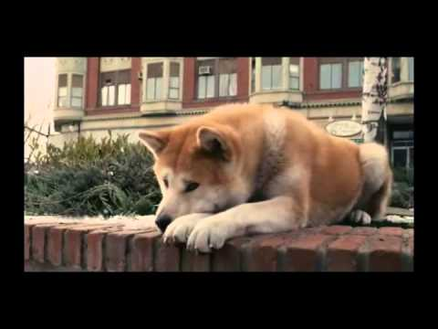 Hachiko A Dog's Story Music Video From Movie video