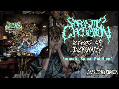 Parasitic Ejaculation - Parasitic Spinal Mutation