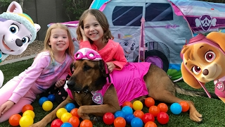 Paw Patrol Family Fun in Tent - Helps Children Learn Colors Trampoline Dog & Colour Bounce Ball Pit