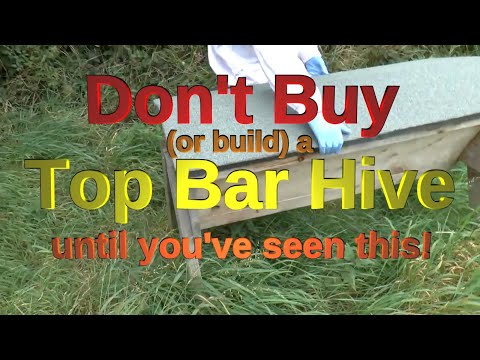 Top bar hive review - some important features and benefits