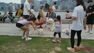 Family time on Sunday relaxing the beautifull park of Hong Kong. #ofw#pinoyako
