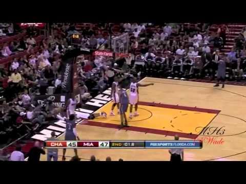 Dwyane Wade 09-10 Season Highlights HD