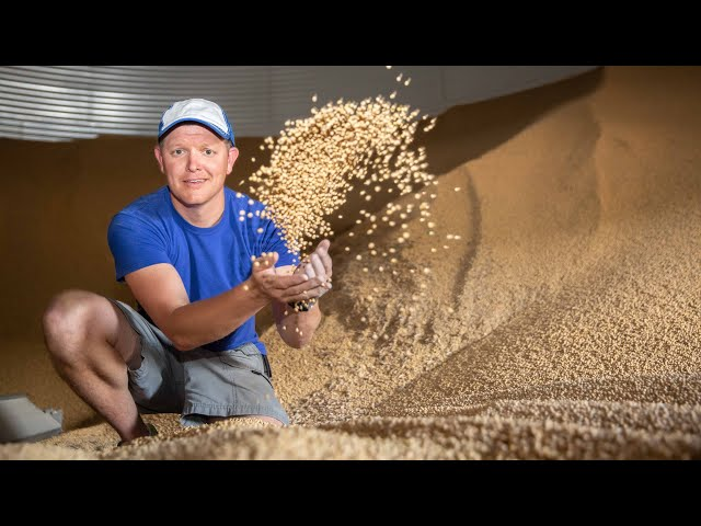 Everything About Grain Bins (Farmers are Geniuses) - Smarter Every Day 218 thumbnail