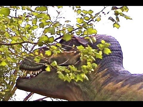 Dinosaurs Giant Reptiles Extinct Real Tyrannosaurus Triceratops Brontosaurus Life cycle