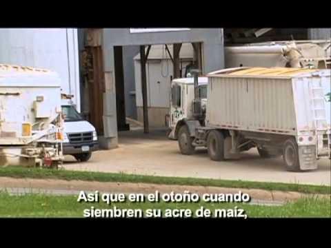 King Corn Subtitulado en español