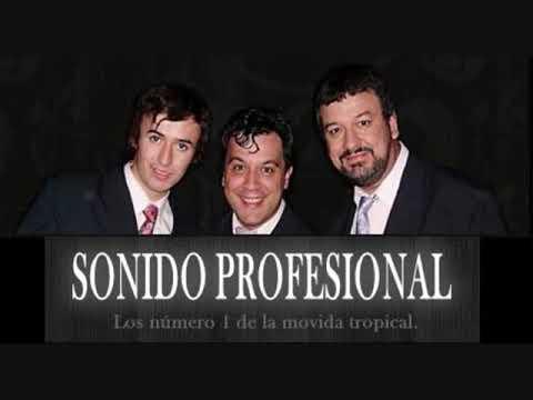 Sonido Profesional - Lluvia