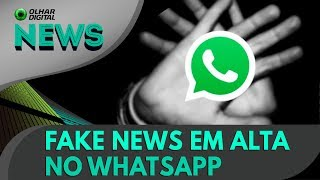 download musica Ao vivo Fake news em alta no WhatsApp OD News - 21052018