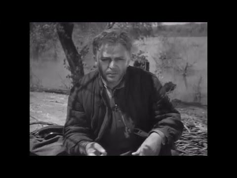 Матов Алексей - Судьба