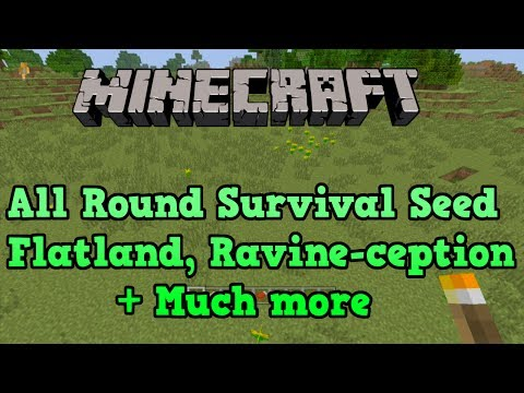 Minecraft PS3 + Xbox 360 Seed: FLAT LAND and Skeleton Spawner in ravine
