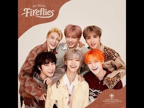 Download 1 HOUR LOOP / 1 시간 NCT DREAM - Fireflies Mp4 baru