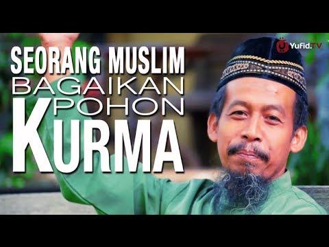 Ceramah Singkat: Seorang Muslim Bagaikan Pohon Kurma - Ustadz Ahmad Zainuddin