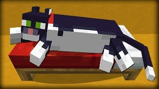 ✔ Minecraft: 25 Things You Didn't Know About Cats