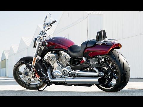 Harley Davidson V Rod Price