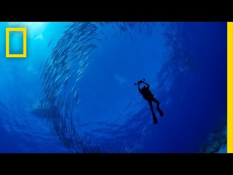 National Geographic Live! - Enric Sala: Journey to the Pitcairn Islands