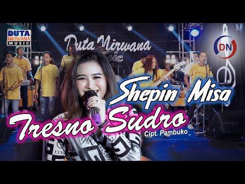 Download Lagu Shepin Misa - Tresno Sudro [] | Abote Wong Nandang Tresno.mp3