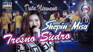 Cover Lagu - Shepin Misa - Tresno Sudro   Abote Wong Nandang Tresno